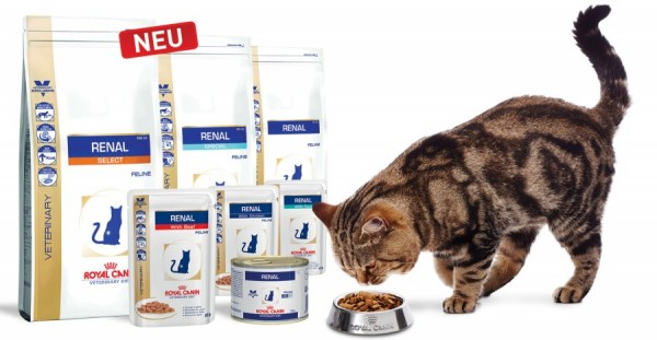 ROYAL-CANIN-RENAL-1_high