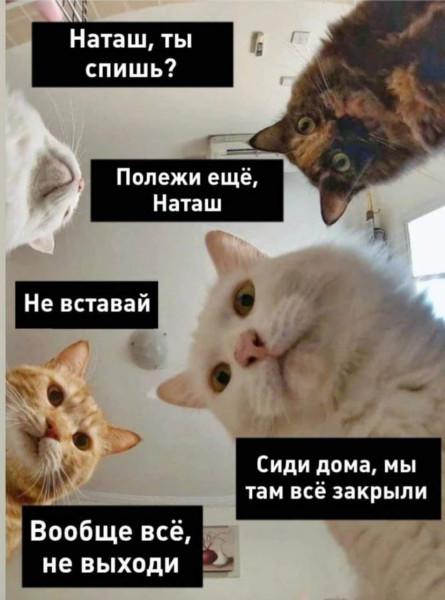 FB_IMG_1585223319211.jpg