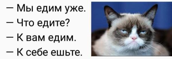 FB_IMG_1585686382871.jpg