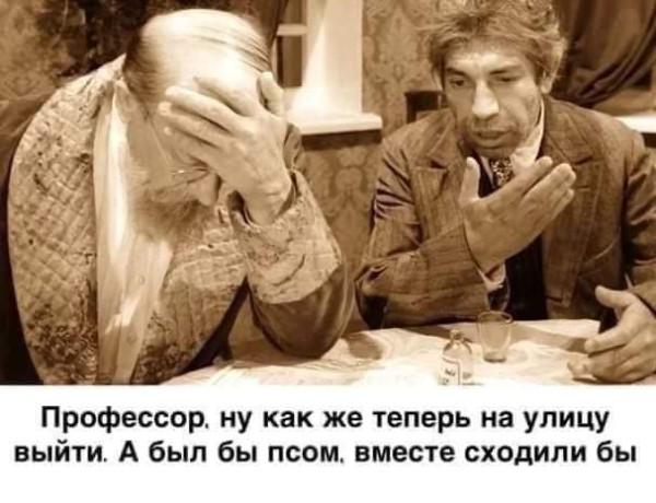 FB_IMG_1586076785938.jpg