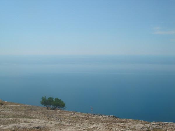 13 дерево на склоне Ильяс-Кая