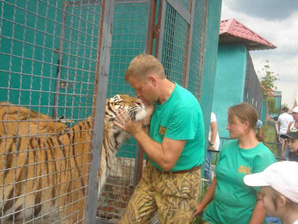 25 у тигров