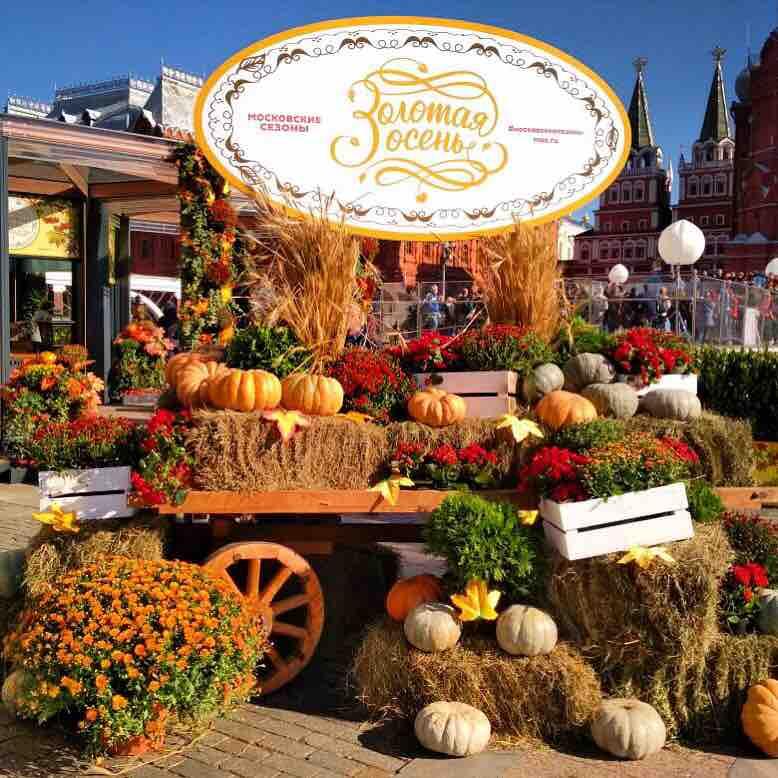 Фестиваль Золотая осень начался