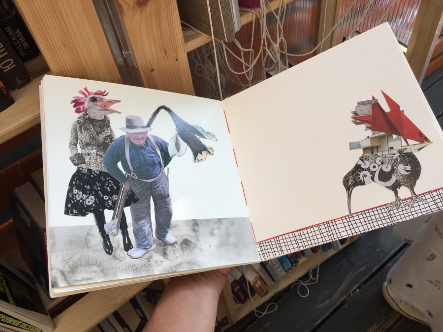 collage5_1.JPG