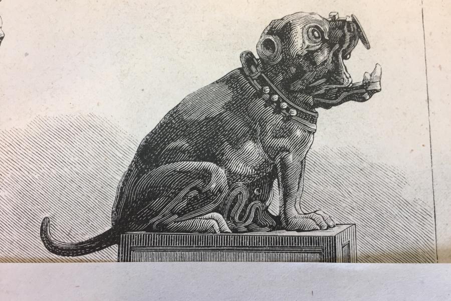 bulldog1_1.jpg