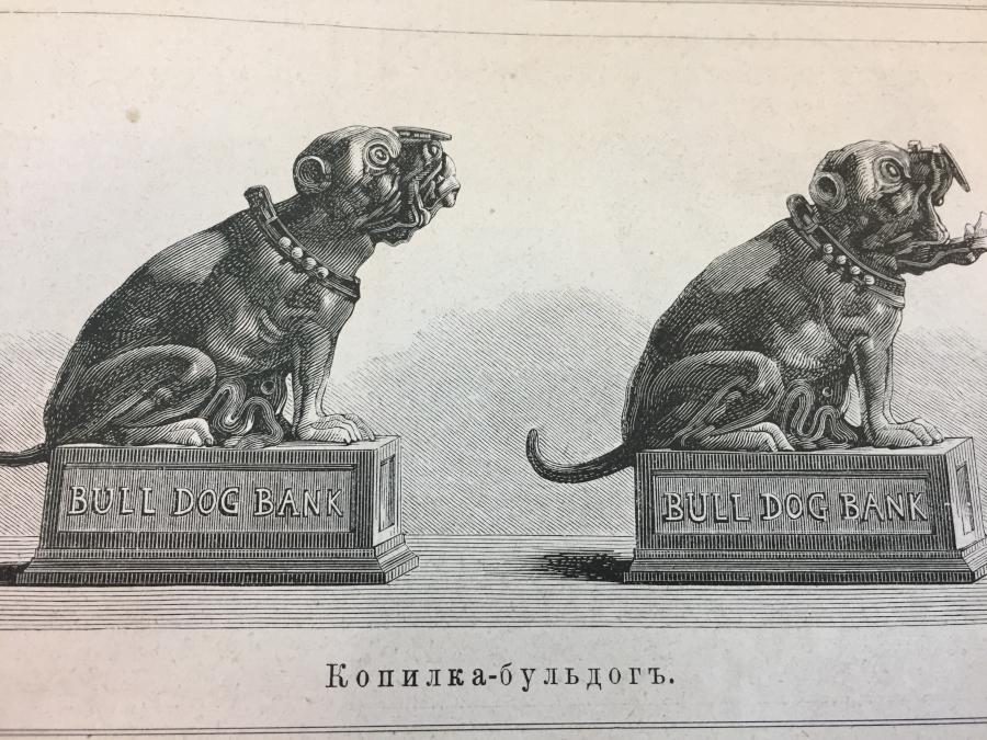 bulldog3_1.jpg