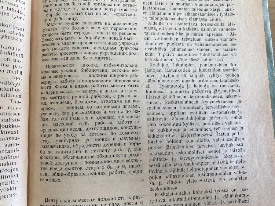 finkorni7_1.jpg