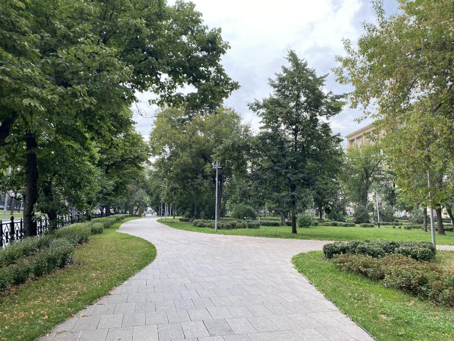 progulkanasov3_1.jpg