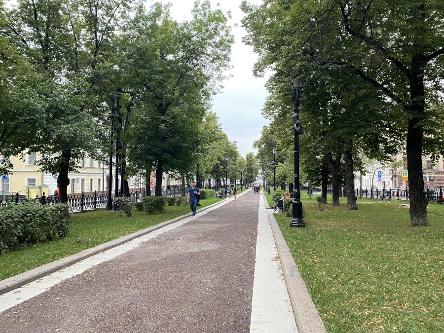 progulkanasov21_1.jpg