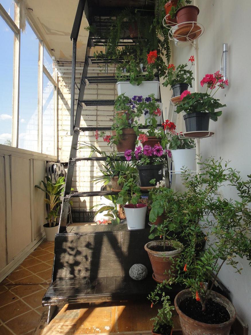 Балкон лестница