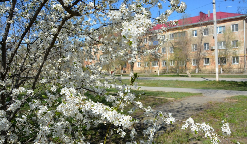 И снова о весне.