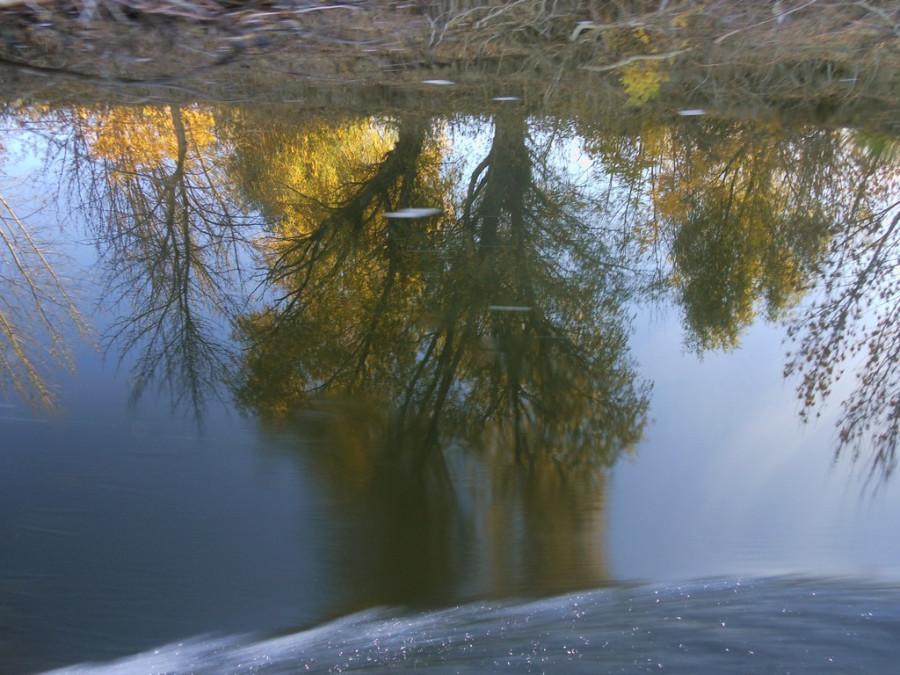 Осеннее отражение.