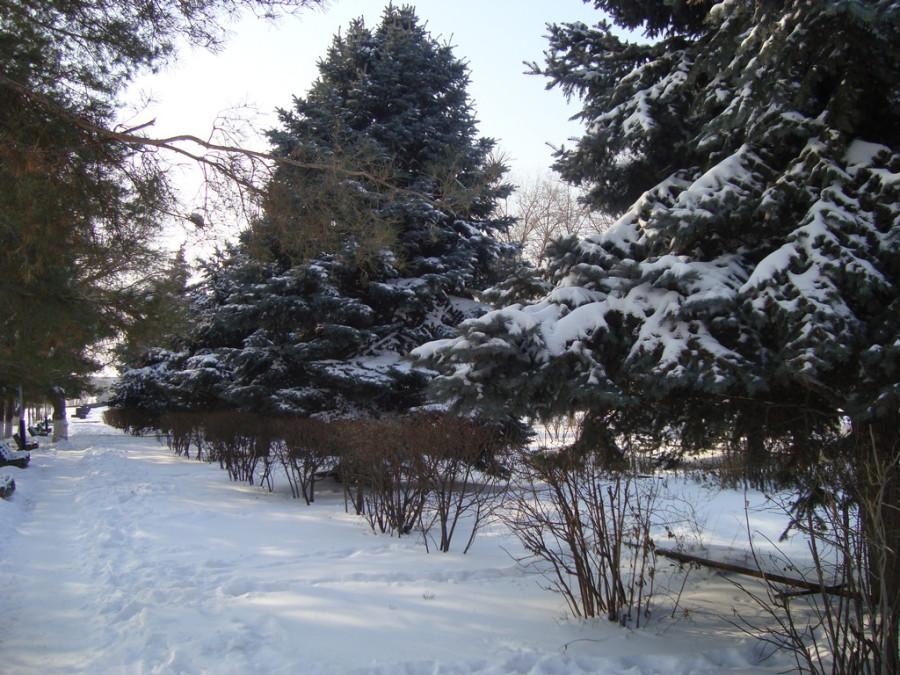 Зима 2012г.