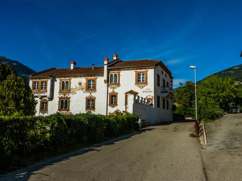 1-P1020968_Burg & Schloss Ansitz Pflanzenstein