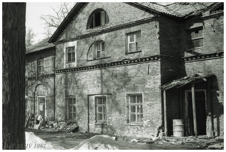 Приютино, 1987
