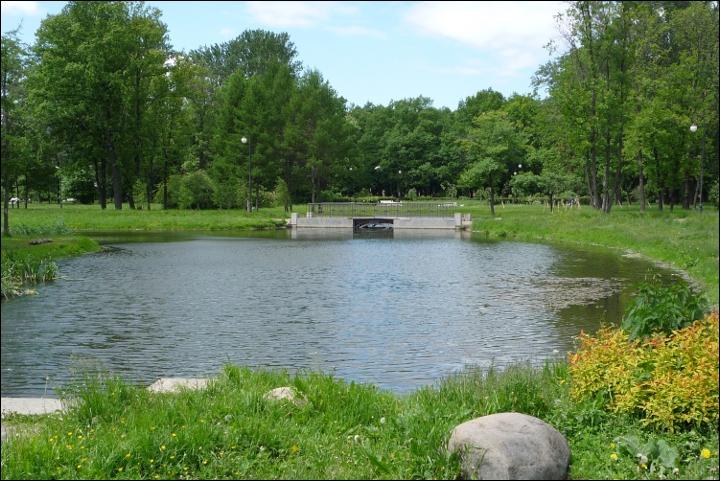 В парке, у водоёма