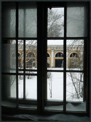 Уткина дача. Вид из окна