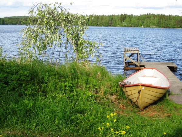 По берегам озер распускается черемуха