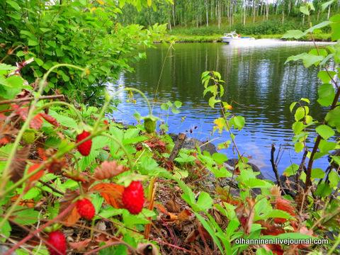 На озере Уннукка в Варкаусе