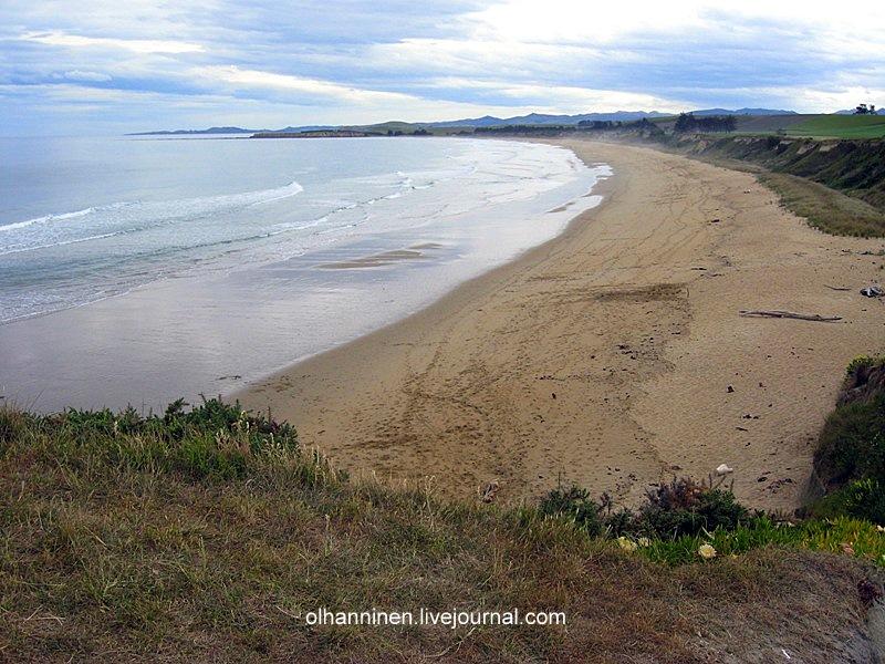 В Новой Зеландии это пляжи от Омарамы до Данедина