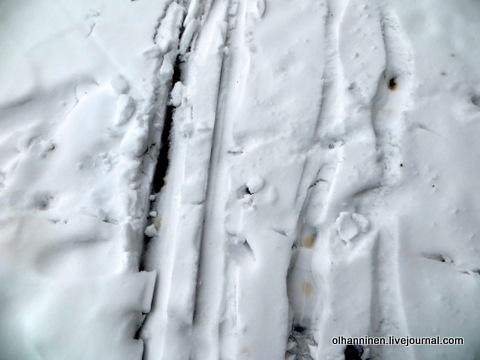 На лыжне мгновенно выступает вода