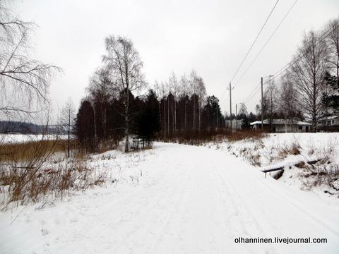 12 утрамбованная под лыжню дорога