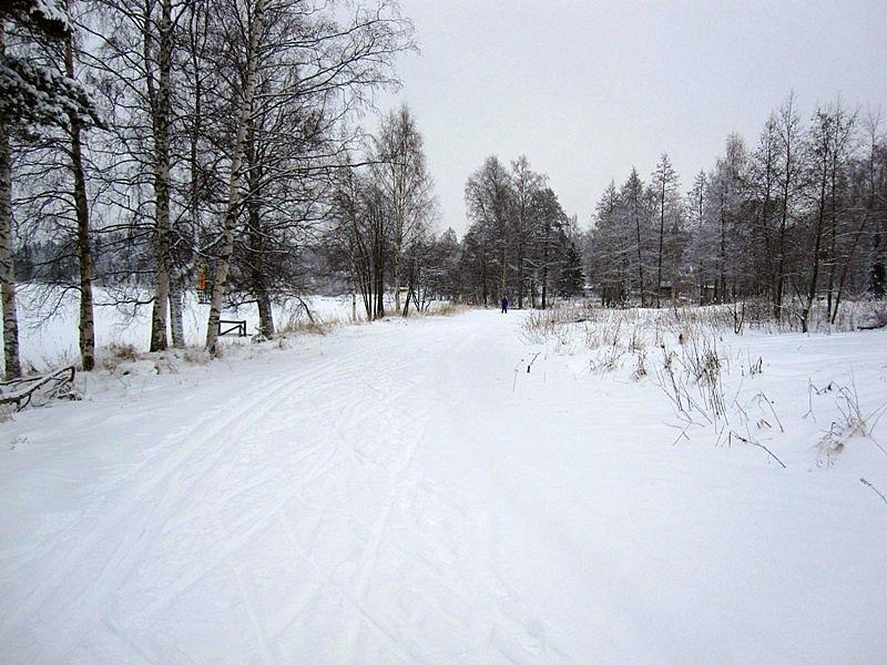 Именно лыжная прогулка в моем дне рождении  напрягла меня меньше всего