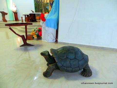 09 фигурка черепахи в центре церкви