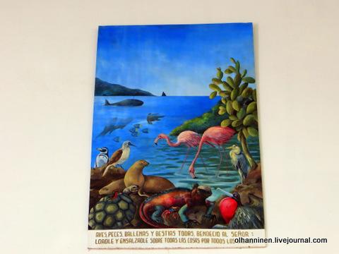 21 картина все животные Галапагосских островов