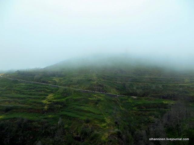 09 холмы и сгоревшие леса вдоль серпантина