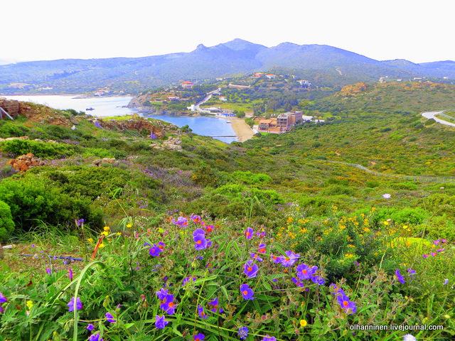 12 Афины, Мыс Сунион, разноцветье