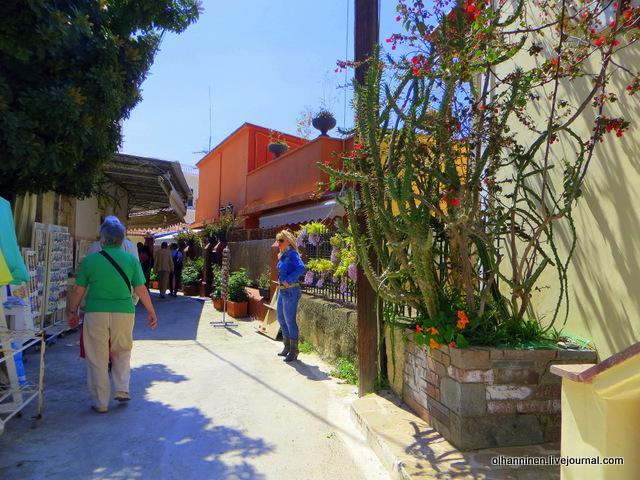 18 Порос, цветут кактусы на улицах