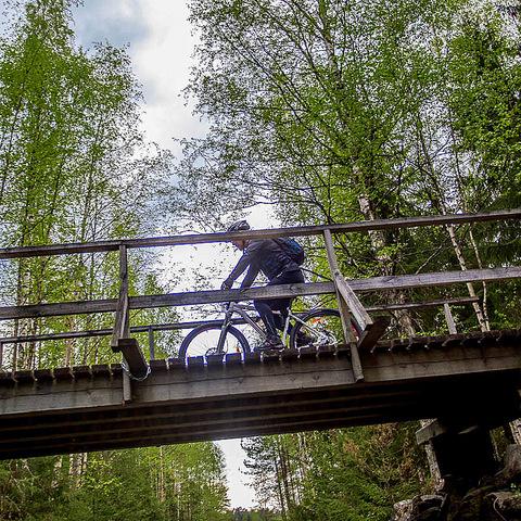 15 велосипедист на мостике над нами