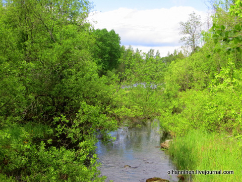 18 речки лесные