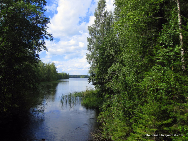 13 лесные реки