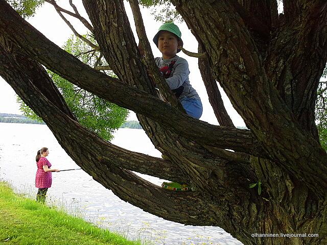 15 онни на дереве мама рыбачит