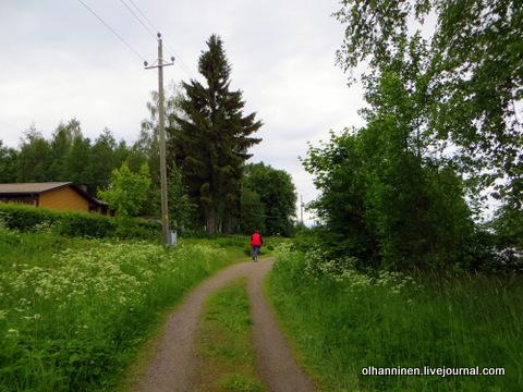 13 по лесным дорожкам