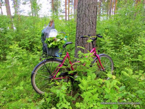 13 два пакета на велосипеде