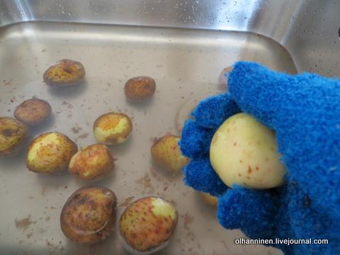 04 картошка в синих перчатках