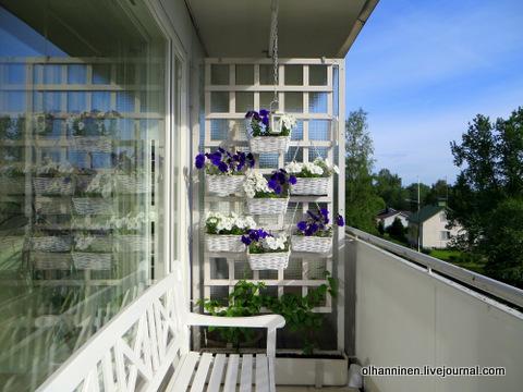 16 балкон цветы