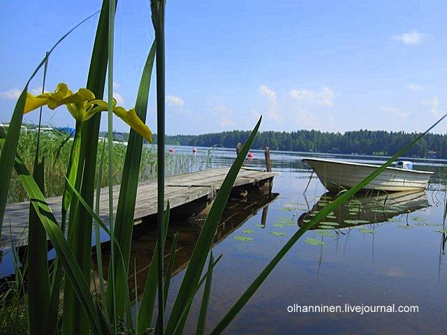 Моя любимая фотография цветка на фоне и лодки