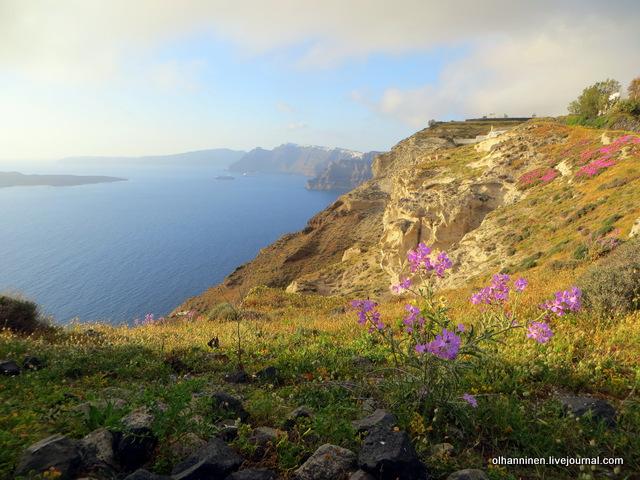 закат Санторини цветы