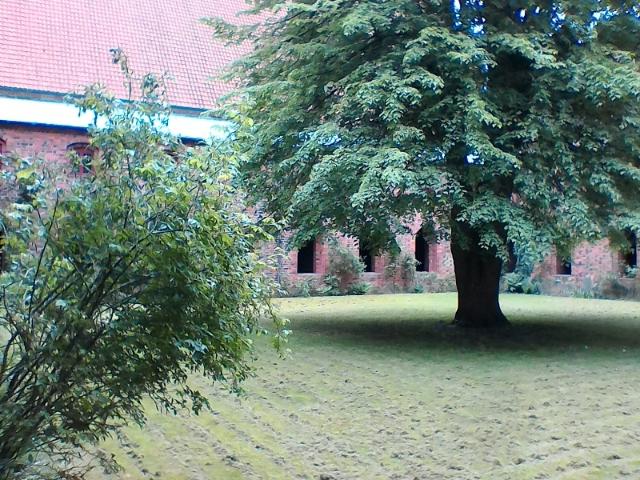 Церковь Девы Марии, клойстер , Хельсингер