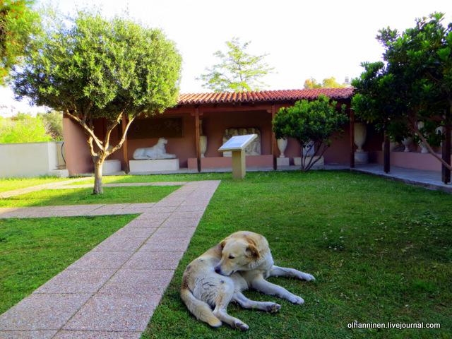 Собака на фоне античного памятника собаке