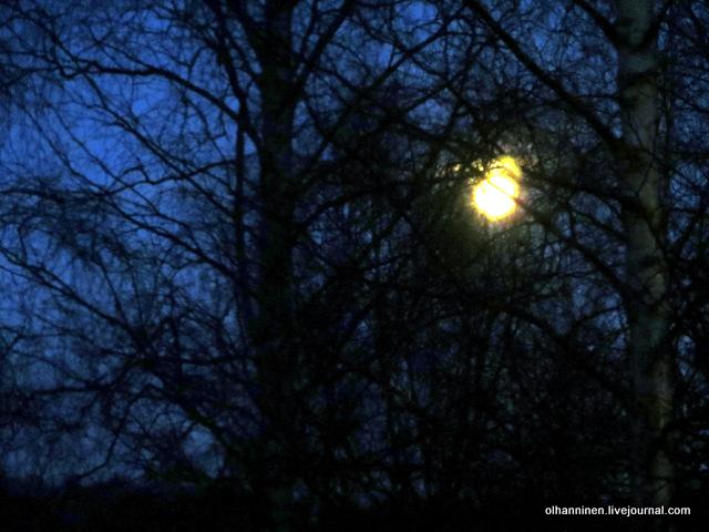 12 Рождественская луна.JPG
