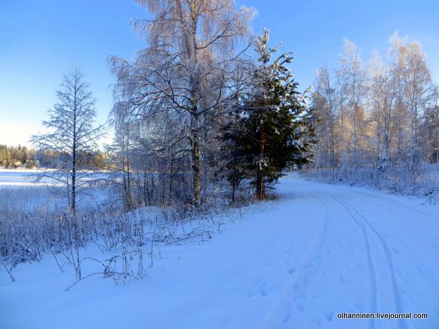 01 самодельная лыжня.JPG