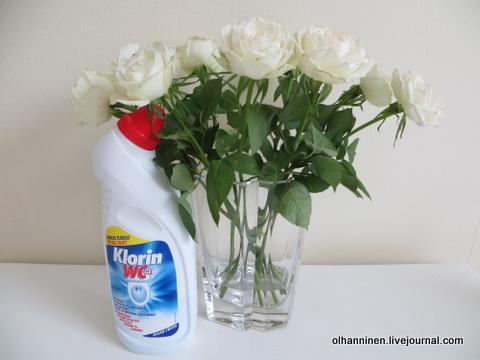 цветы и хлорин