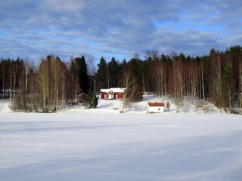 В лесу на берегу стоит домик с отдельной сауной