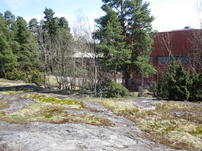 Школа расположена в очень живописном скалистом парке