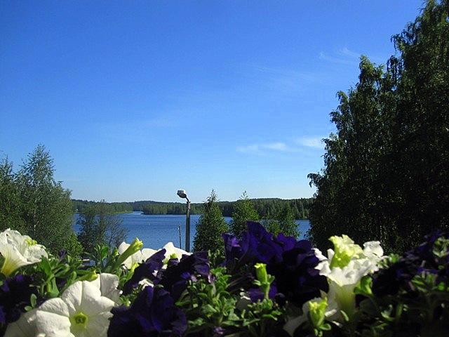 Во многих странах люди любят летом украшать цветами свои жилища